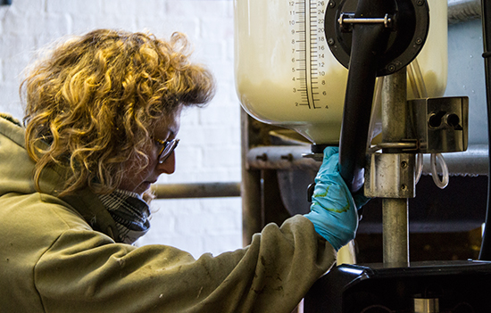 farm-milking