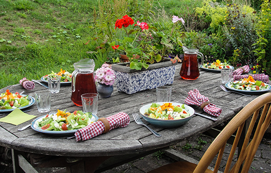 Loch Arthur, Camphill Community, Table setting, Garden