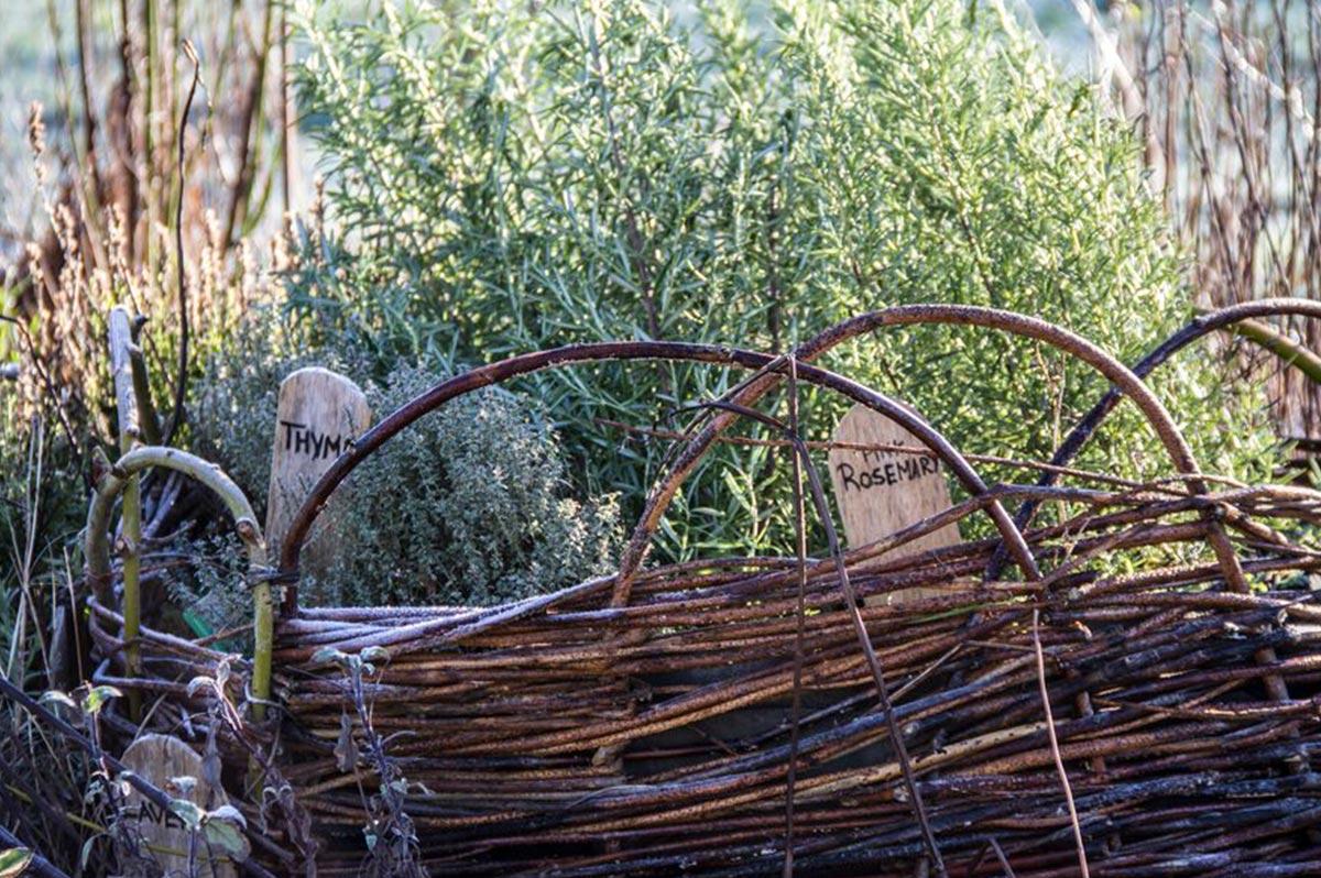 loch-arthur-camphill-community-garden-3