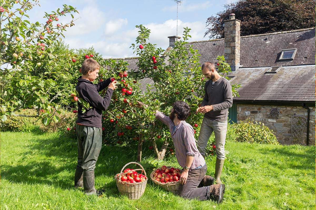 loch-arthur-camphill-community-garden-7